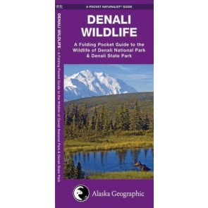Waterford-Denali Wildlife