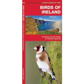 Waterford-Birds of Ireland