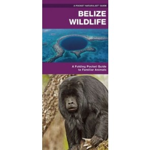 Waterford Belize Wildlife (2013)