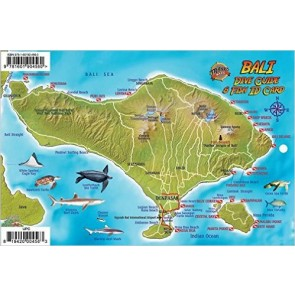 Fish Card Bali Dive Guide & Fish ID Card / Indonesian Coral Reef Creatures