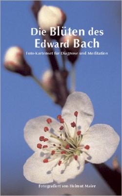 Die Blueten des Edward Bach