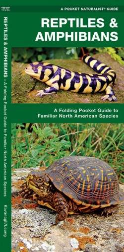 Waterford-Reptiles & Amphibians (North American Species)
