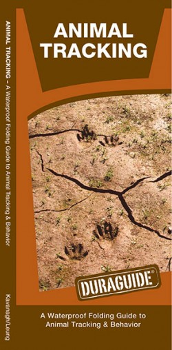 Natuurgids Animal Tracking