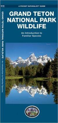 Waterford Grand Teton National Park Wildlife (2013)