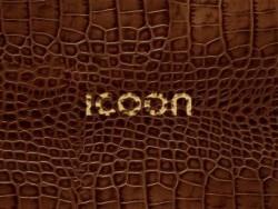 Icoon Croco