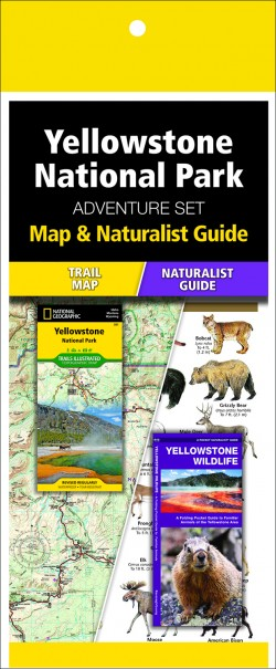 Yellowstone National Park Adventure Set (Map & Naturalist Guide)