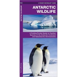 Waterford Antarctic Wildlife (2013)