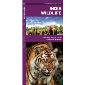 Waterford-India Wildlife (2015)