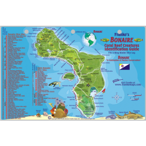 Fish Card Bonaire Dive Sites & Fish ID Card /  Coral Reef Creatures