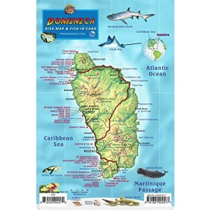 Dominica Dive Map & Fish ID Card /  Coral Reef Creatures