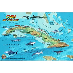 Fish Card Cuba Sea Dive Sites & Fish ID Card /  Coral Reef Creatures